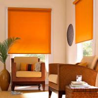 Открытые рулонные шторы (оранжевые)