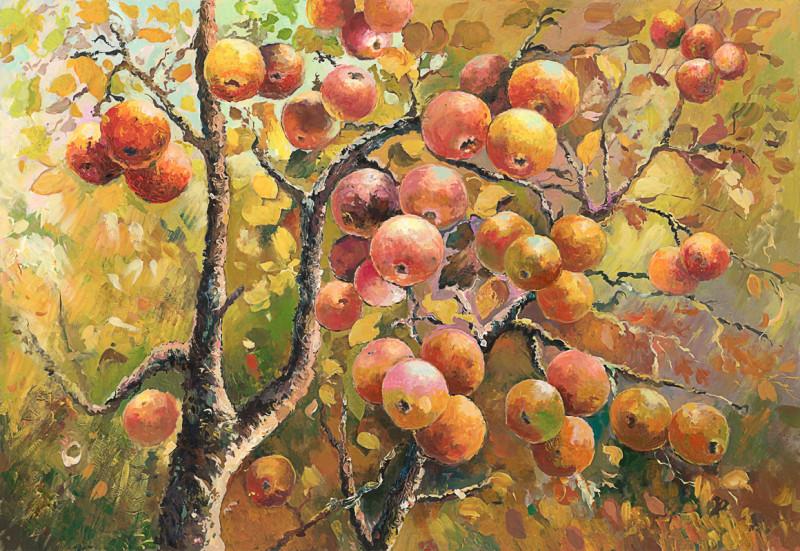 Ветка с яблоками
